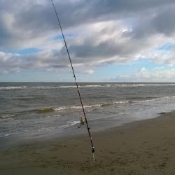 Pêche mer